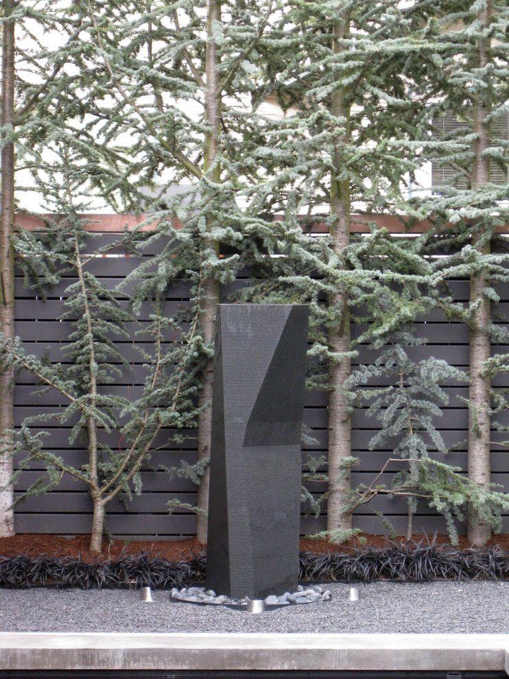 Privacy Fence Trees   Modern Landscape Also Art Black Mondo Grass Fences Gravel Monkey Grass Mulch Sculpture Spruce Stones Wood Slat Fence