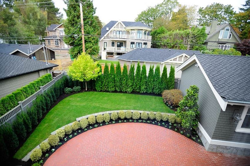 Privacy Fence Trees   Traditional Landscape Also Traditional