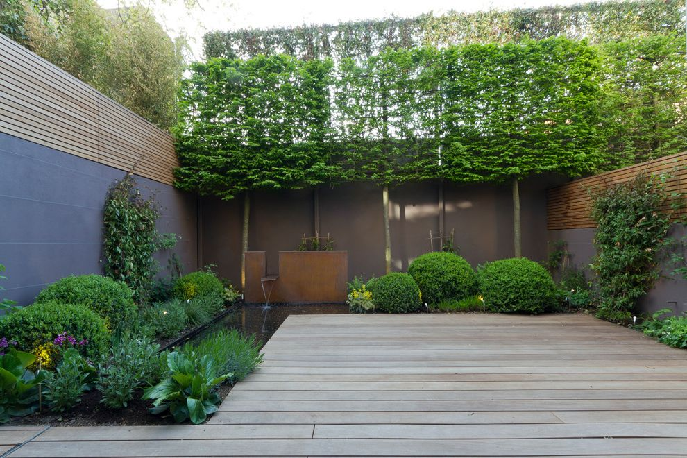 Privacy Fence Trees Traditional Landscape And Bench Brick