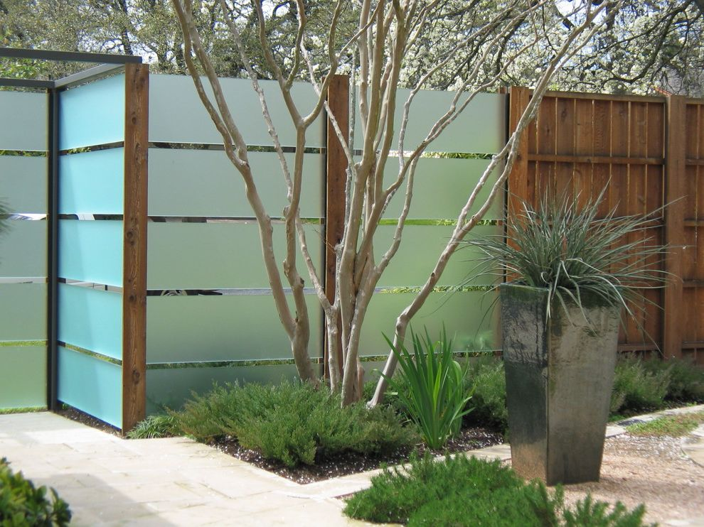 Privacy Fence Trees With Contemporary Landscape And Container