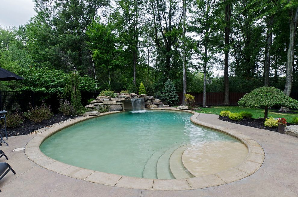 Public Pools in Tampa with Traditional Pool  and Backyard Renovation Boulders Concrete Pool Coping Freeform Pool Pine Tree Pool Pool Steps Poolside Landscaping Shallow End Small Tree Stone Waterfall Tranquil Trees
