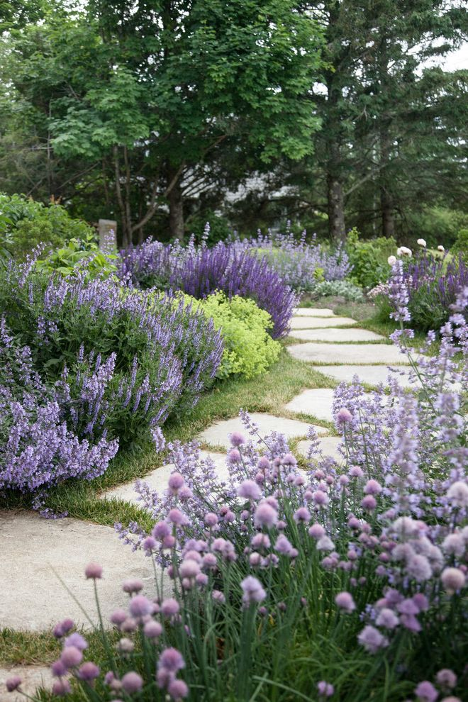 Purple Flowers Names   Rustic Landscape  and Landscaping Lavender Stone Pavers