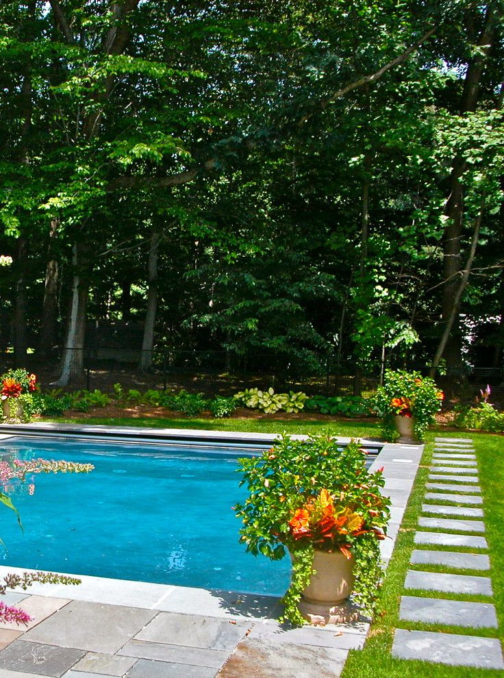 Roberts Pools with Traditional Pool  and Grass Lawn Orange Flowers Outdoor Potted Plant Pool Purple Flowers Shrubs Stone Pathway Stone Patio Stone Pavers Stone Pool Trim Stone Walkway Trees