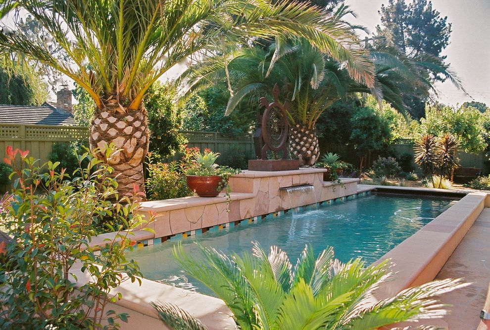 Sago Palm Care with Tropical Pool Also Canary Island Palm Lap Pool Palm Trees Pool Coping Pool Tile Water Feature Waterfall Wood Fencing