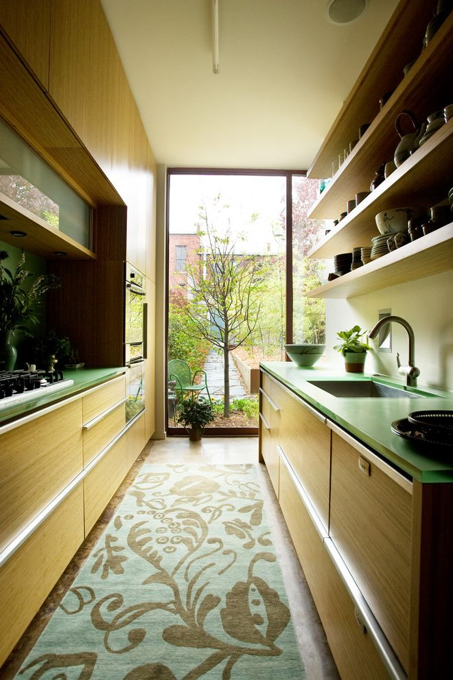 Kitchen With Bamboo Cabinets And Resin Countertops $style In $location