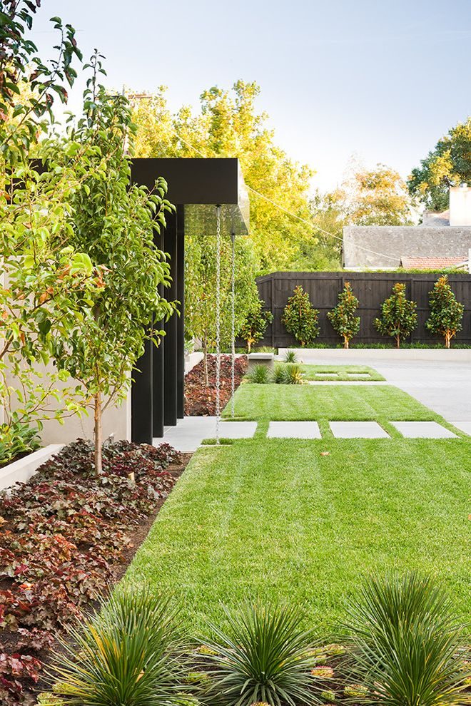 Sod for Shade with Contemporary Landscape Also Contemporary