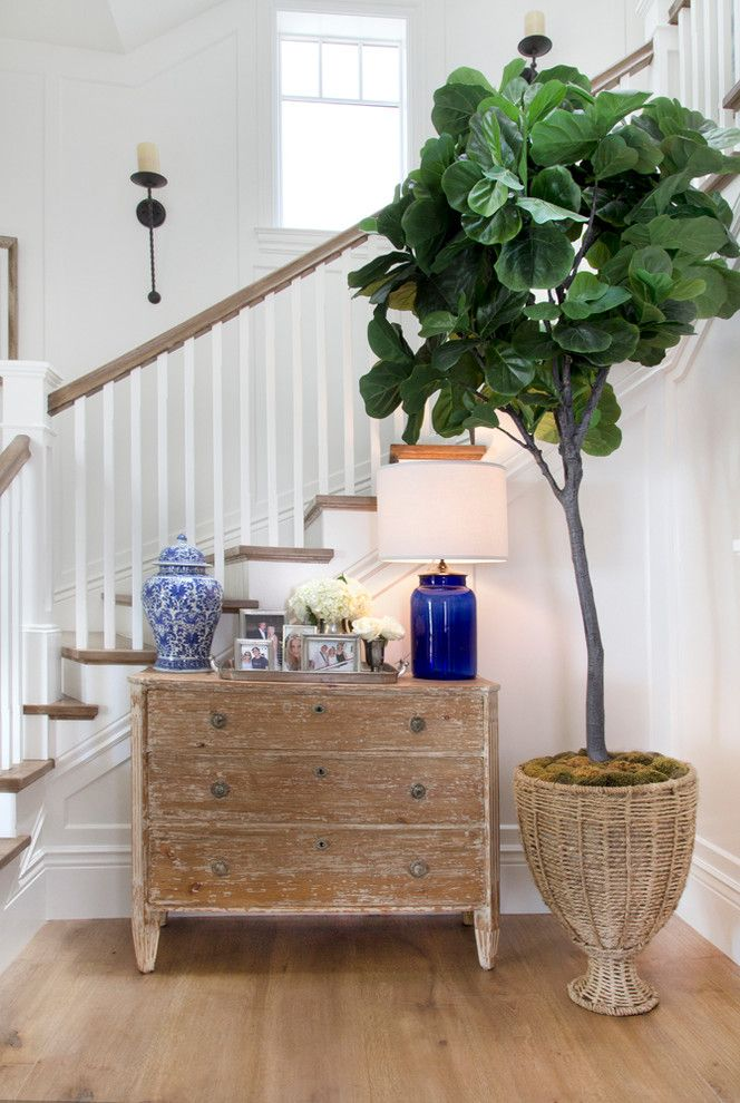 Solid Wood Chest of Drawers for Sale   Beach Style Staircase Also Beach Cottage Beach Home Beachfront Coastal Cottage Coastal Decor Coastal Home Cozy Dresser Potted Plant Wall Sconce