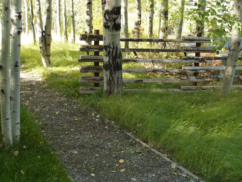 Split Rail Fence Cost   Rustic Landscape Also Birch Tree Grass Gravel Low Maintenance Native Natural Overgrown Path Rustic Split Rail Fence Walkway Wooden Fencing Woodland