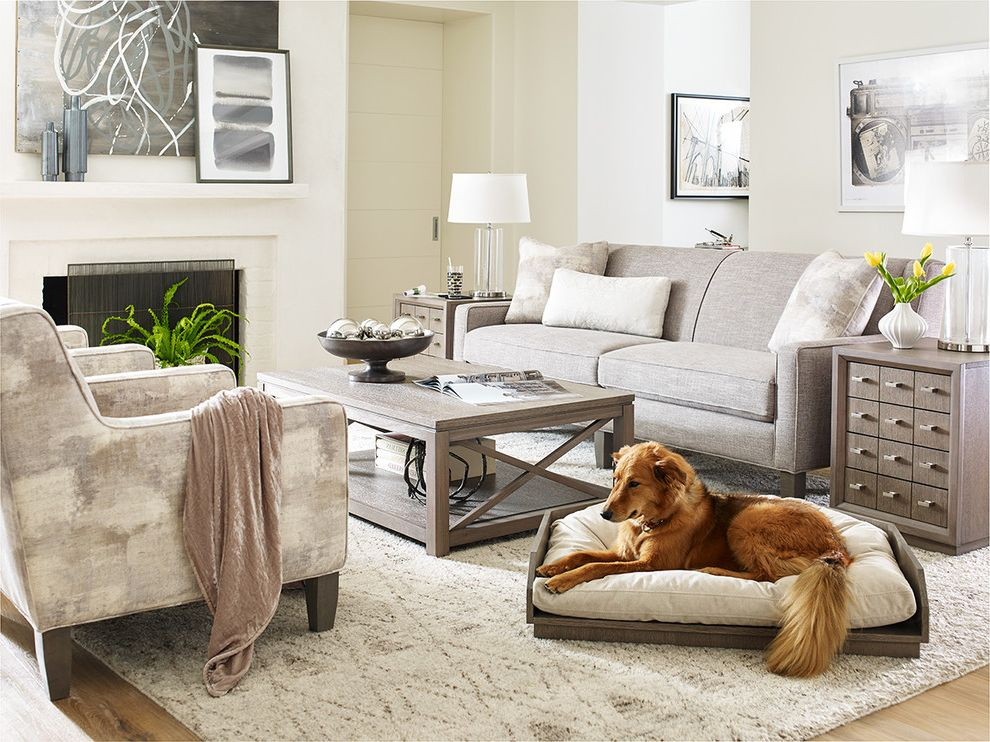 Starfurniture   Modern Living Room Also Bed Chairside Clean Cocktail Coffee Collection Dog End Furniture Gray Greige Grey Hardwood Highline Home Ivory Modern Neutral Pet Rachael Rachel Ray Table Wood