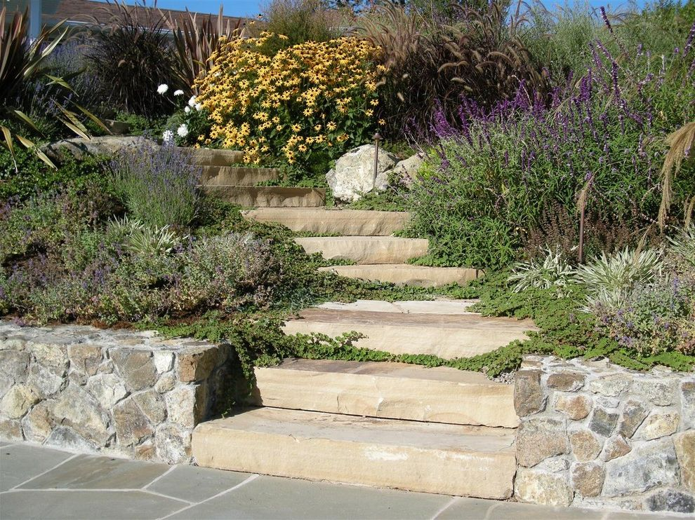 Stone Slabs for Sale with Traditional Landscape  and Flowers Landscape Outdoor Stairs Plants Purple Flowers Shrubs Stone Stairs Stone Wall White Flowers Yellow Flowers