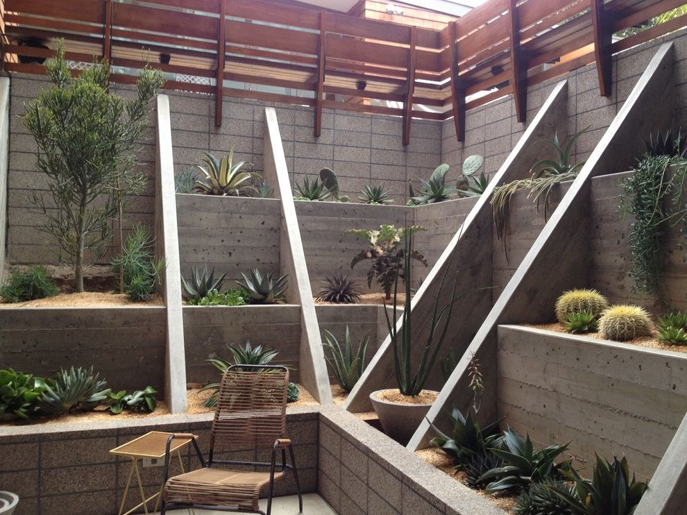 Structural Engineer San Francisco with Modern Landscape  and Board Formed Concrete Cactus Concrete Gravel Lounge Chair Succulent Plants Terraced Garden Wood Railing