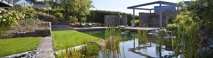 Stucco Cost Per Square Foot   Contemporary Pool  and Natural Pool Natural Swimming Pool Non Chlorinated Nsp Plant Filter