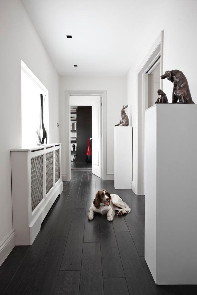 Sun Touch Heated Floor with Contemporary Hall Also Animal Sculpture Black and White Dark Wood Dog Doorway Hallway Monochrome Rabbit Radiator Cover Vase White Wall Wooden Floor