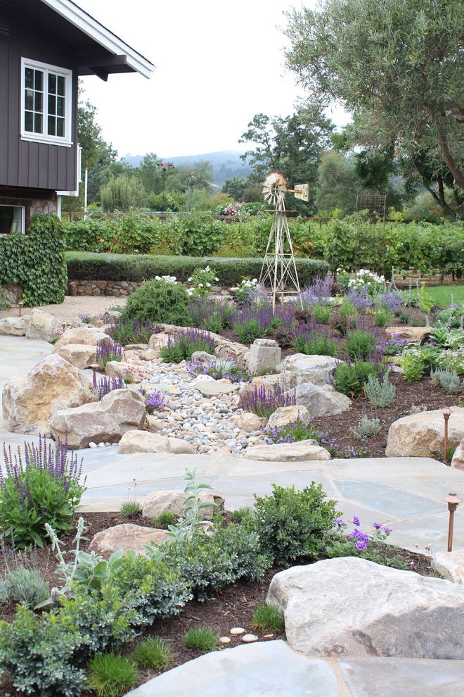 Swedish Mill Creek   Mediterranean Landscape  and Bluestone Board and Batten Boulders Dry Creek Garden Lighting Garden Path Grape Vines Gray Siding Paved Path Pebbles Perennials Purple Flowers Sage Vineyard Windmill Wood Mulch
