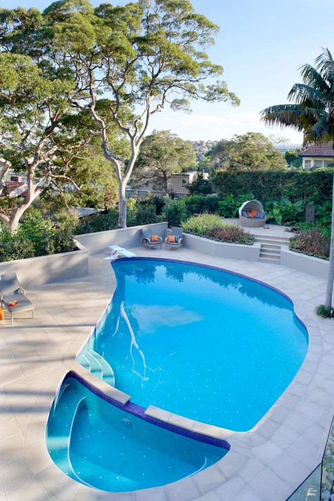 Swim with Otters San Diego   Contemporary Pool  and Backyard Landscape Design Backyard Renovation Landscape Design Modern Landscape Pool Chairs Pool Renovation Space Designs Space Landscape Designs Swimming Pool Renovation Tropical Garden