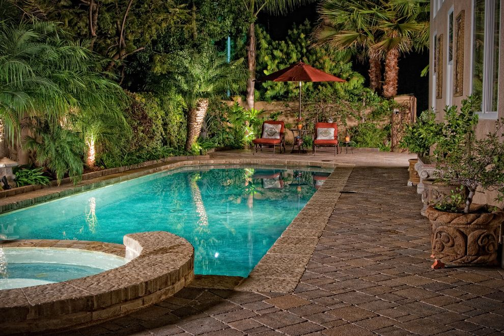 Swim with Otters San Diego   Mediterranean Pool Also Chaise Lounge Container Plants Garden Lighting Garden Wall Hot Tub Jacuzzi Outdoor Lighting Palm Trees Patio Furniture Patio Umbrella Potted Plants Spa