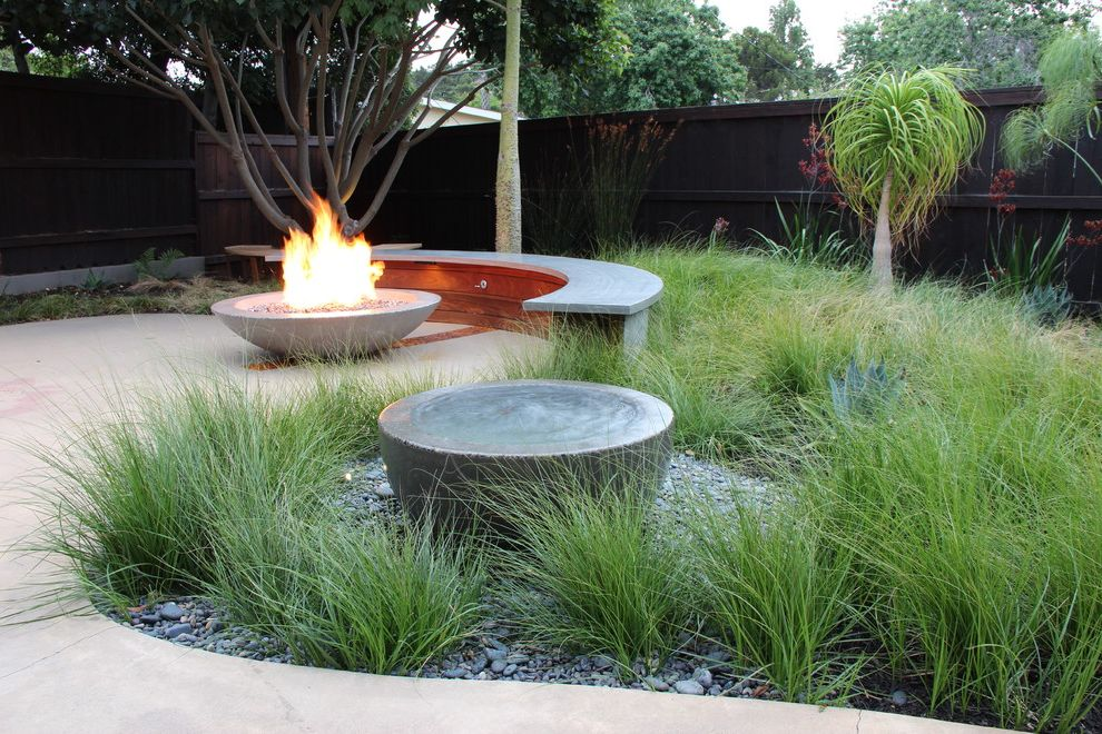 Tabletop Fire Bowl   Contemporary Landscape  and Amoeba Curved Bench Fire Pit Fountain Grasses Palm Tree Patio Wood Fence