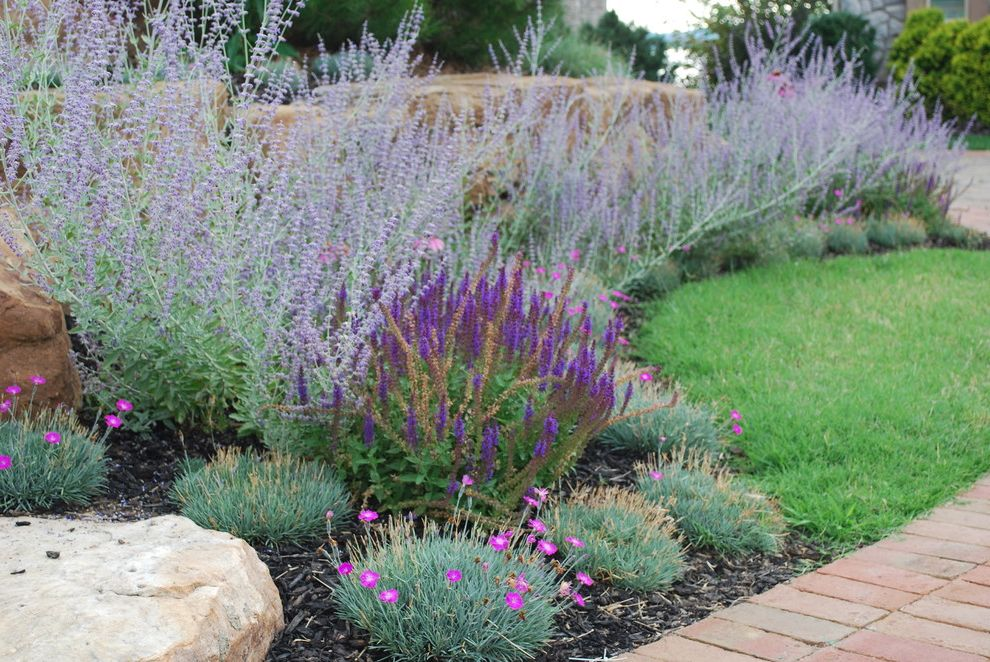 Texas Sage Shrub with Eclectic Landscape  and Boulders Coneflower Dianthus Perennial Border Russian Sage Salvia