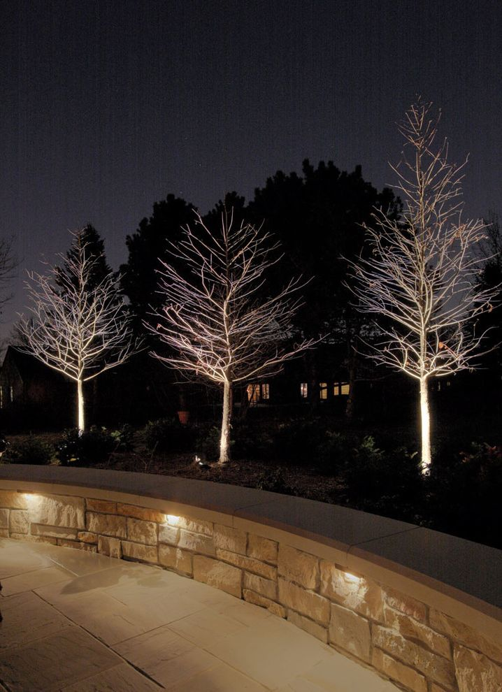 The Light Palace Omaha with Traditional Patio  and Decks Landscape Lighting Outdoor Lighting Patios Specialty Lighting Trees Wall Lighting