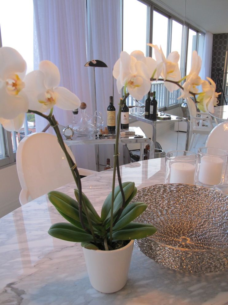 The Penthouse Santa Monica with Contemporary Dining Room  and Home Stagers Home Staging Interior Designer
