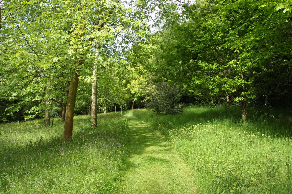 The Woodlands of College Station with Traditional Landscape Also Bluebells Country Garden Countryside Garden Garden Path Luscious Garden Moxed Path Wooded Area Woodland