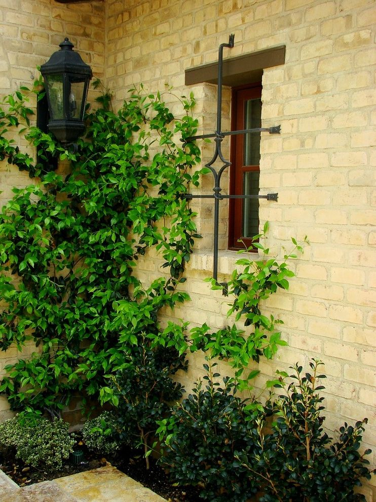 Triska Funeral Home   Mediterranean Landscape  and Brick Wall Climbing Plants Lanterns Outdoor Lighting Planters Rustic Window Grate