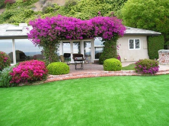 Turf Evolutions    Spaces  and Backyard Fake Grass Grass Landscape Lawn Lawn Chairs Modern Landscape Patio Shed Turf Turf Grass