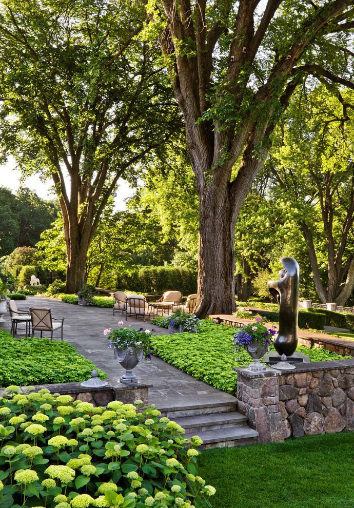 Turf Evolutions   Traditional Landscape  and Bluestone Formal Garden Art Grass Hydrangeas Lawn Mass Planting Outdoor Cushions Park Path Patio Furniture Row of Trees Stone Paving Stone Wall Turf Walkway