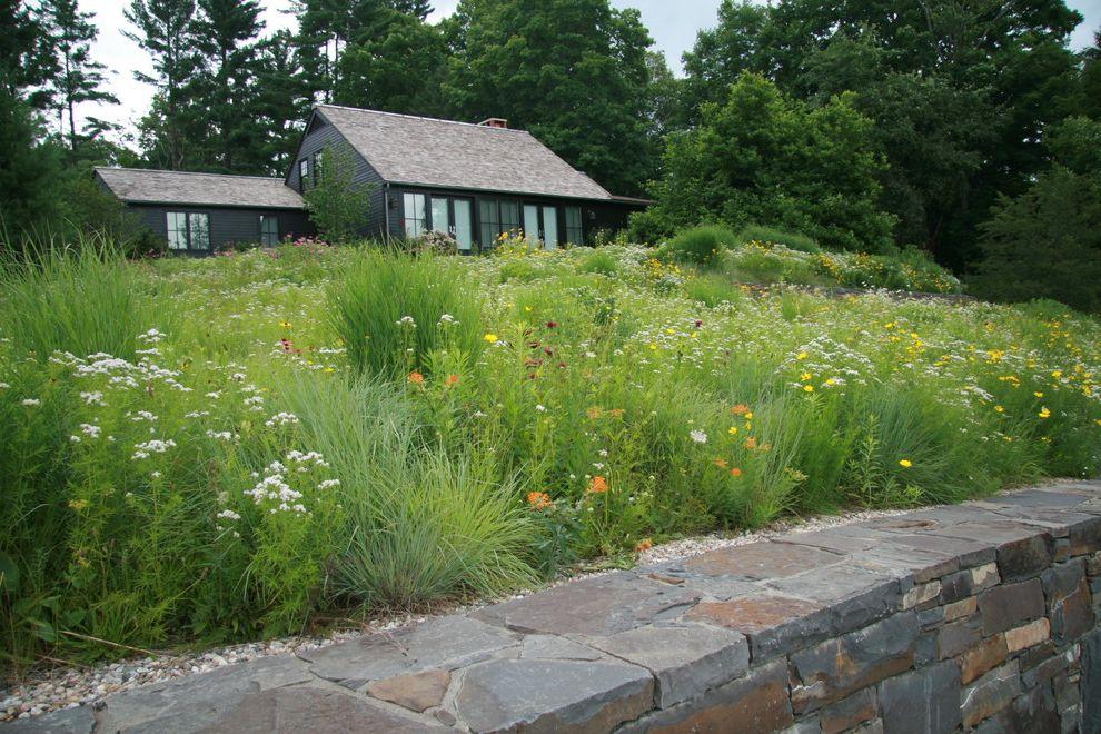 Turf Evolutions   Transitional Landscape  and Connecticut Design Garden Garden Design Garden Dialogue Lakeville Landscape Landscape Architect Landscape Design Larry Weaner Landscape Associates Meadow Native Wildflower Tclf