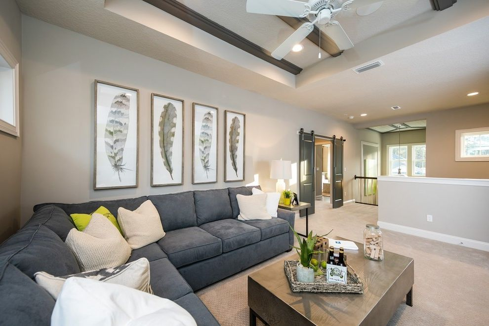Twenty Mile Theater with Transitional Living Room Also Additional Room Architectural Details Barn Doors Coastal Decor Extra Space Family Room Gray Sectional Gray Walls Loft Style Living Room Lofted Living Room Sliding Doors Taupe Walls Wicker Tray