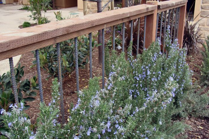 Vinyl Fencing San Diego    Spaces  and Fence Pressure Treated Rebar Rebar Fence Rosemary