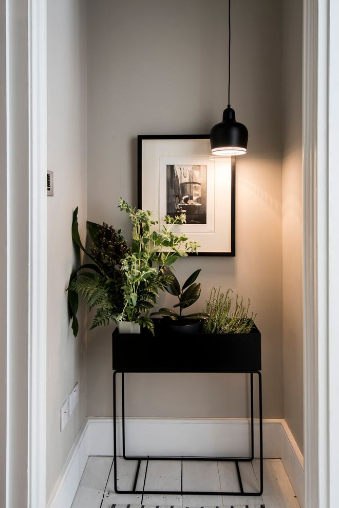 Vista Print Coupon   Contemporary Entry  and Apartment Black Console Black Pendant Light Condo Gray Walls Hall Hallway Indoor Plants Pendant Lighting Plant Lover Plants Small Space Design Taupe Walls White Painted Wood