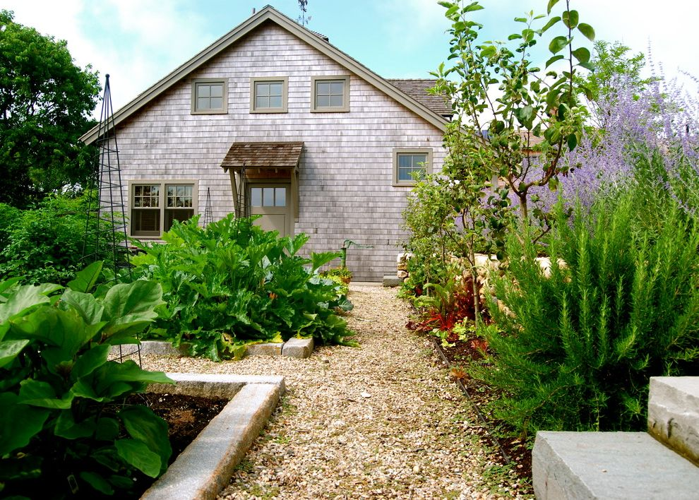 Water Gardens Theater with Farmhouse Landscape Also Beach Home Beachfront Concrete Borders Edible Garden Garden Garden Structure Garden Teepee Gravel Walkways Nantucket Planting Beds Purple Flowers Tipi Vegetable Beds Vegetable Garden Zucchini Plant