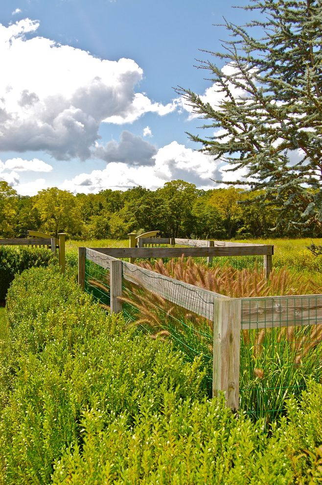 Weld Wire Fence    Spaces  and Garden Fence Garden Gate Grasses Hedge Naturalistic Shrub View Vista Wire Fence