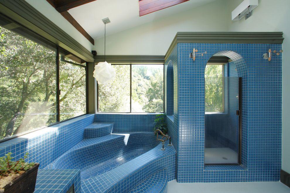 What is a Roman Tub   Eclectic Bathroom  and Blue Tile Dark Window Trim Pendant Light Plant Shower Enclosure Sky Light Tiled Bathtub White Walls Windows
