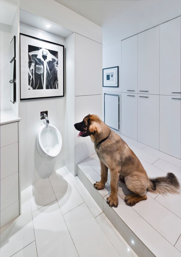 What is He Detergent with Modern Bathroom  and Black and White Artwork Black and White Wall Art Dog Bowl Dog Fountain Drinking Fountain Minimal Minimalism Urinal White Cabinets White Drawers White Tile White Tile Floor White Wall
