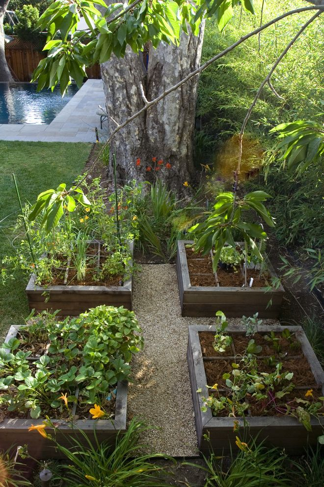 What is Square Foot Gardening with Contemporary Landscape and Backyard Edible Gardens Gravel Path Lilies Raised Beds Square Foot Gardening Vegetable Gardens