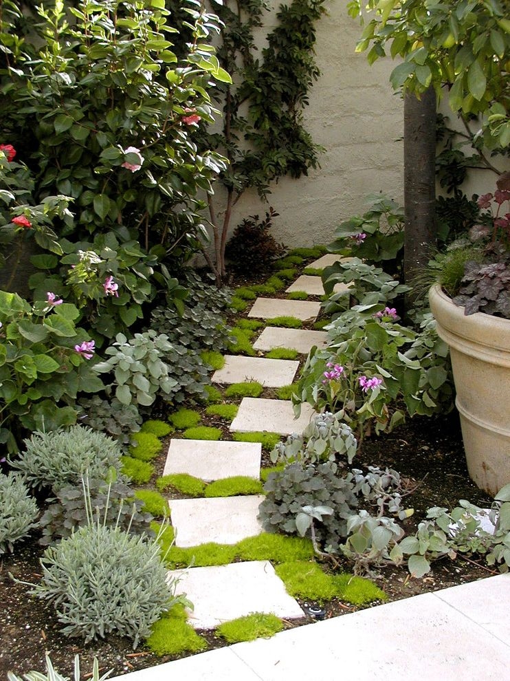 Where to Buy Stepping Stones   Mediterranean Landscape Also Climbing Plant Container Plant Groundcover Lavender Moss Path Paver Planting Planting Design Potted Plant Residential Landscape Design Small Space Step Walkway Wall
