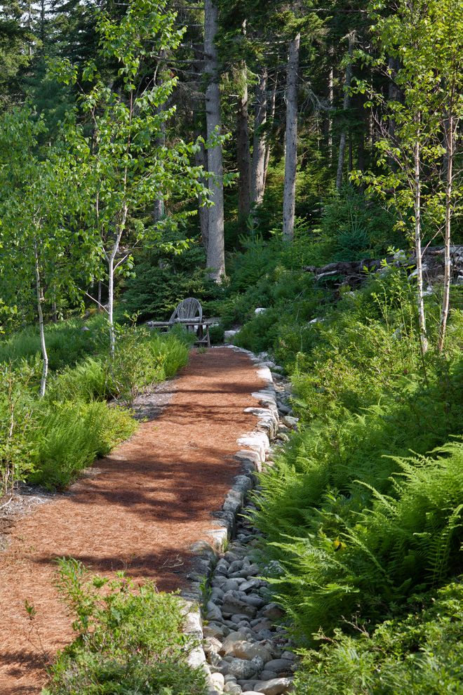 Woodland Park Lodges   Rustic Landscape  and Drainage Ferns Fieldstone Forest Garden Path Hillside Mass Plantings Path Path Edging Permeable Paving River Pebbles Slope Walkway