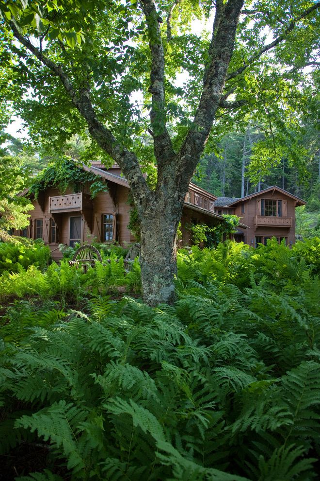 Woodland Park Lodges with Rustic Landscape  and Rustic