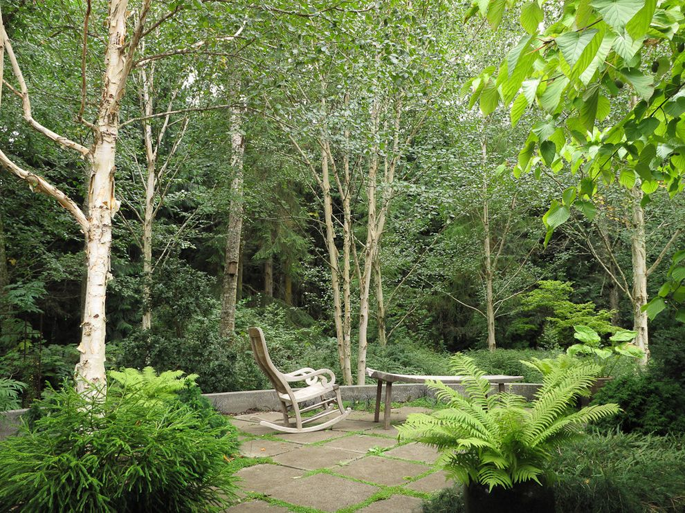 Woodland Park Lodges with Traditional Patio Also Backyard Bench Birch Concrete Garden Groundcover Natural Landscape Patio Pavers Plants Retaining Wall Rocking Chair Seating Trees