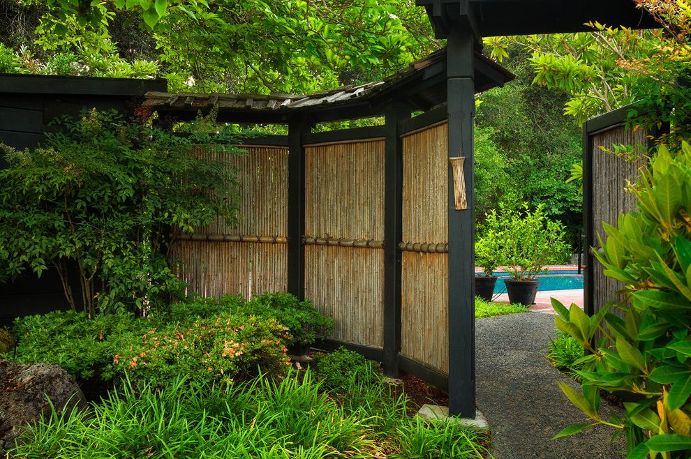 Bamboo Growth Rate   Asian Landscape Also Asian Bamboo Fence Boulders Covered Path Gate Japanese Garden Lush Garden Path Patio Pool Shingle Roof Tall Grasses
