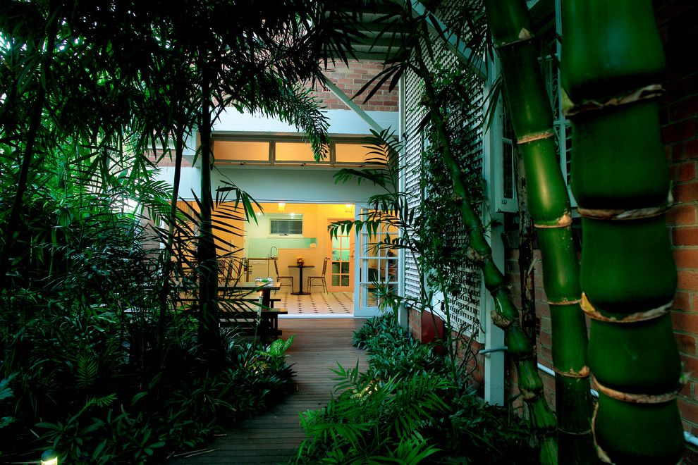 Bamboo Growth Rate   Tropical Landscape Also Bamboo Brick Clerestory Deck Dense Glass Doors Jungle Landscape Leafy Palm Tree Patio Picnic Table Sliding Doors Thick Thick Vegetation Tropical