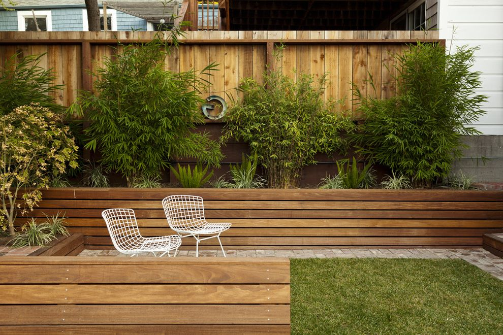 Bamboo Growth Rate with Modern Landscape  and Fence Flower Bed Patio Stone Wood Fence Wood Wall