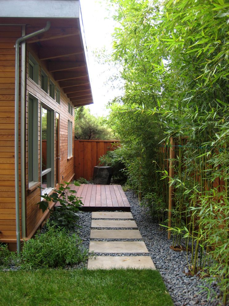 Bamboo Growth Rate with Traditional Landscape  and Bamboo Deck Fountain Grass Lawn River Pebbles Roof Overhang Side Yard Turf Water Feature Wood Siding