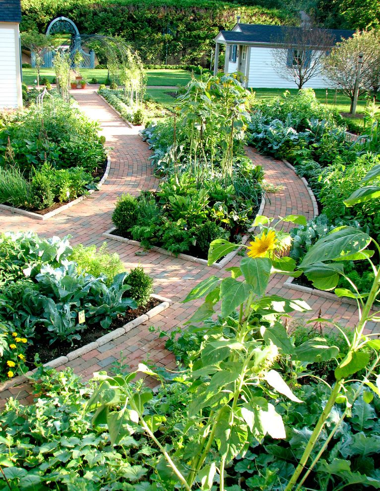 Crenshaw Pest Control   Traditional Landscape Also Arbor Brick Path Climbing Vines Garden Garden Gate Green Shutters Kitchen Garden Lawn Planting Beds Small Buildings Stone Edgers Sunflowers White Lap Siding Porch
