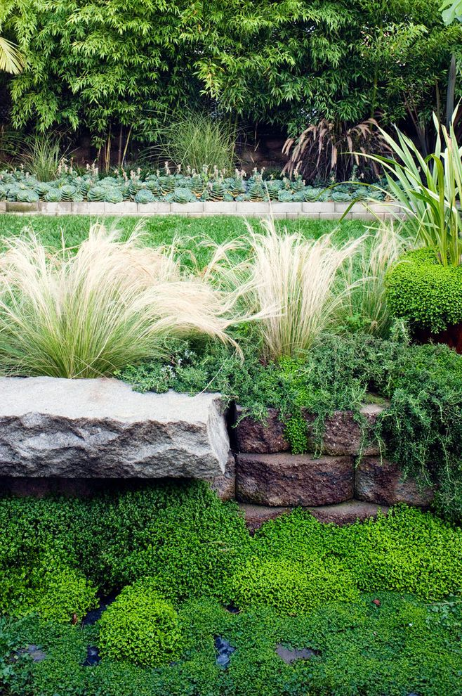 Drought Resistant Ground Cover with Eclectic Landscape Also Block Wall Ground Cover Lawn Lush Garden Ornamental Grasses Stacked Blocks Stone Slab