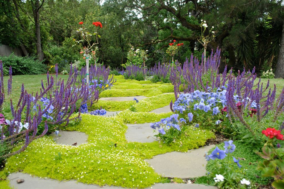 Drought Resistant Ground Cover with Eclectic Landscape  and English Garden Flower Bed Ground Covers Stepping Stone Stone