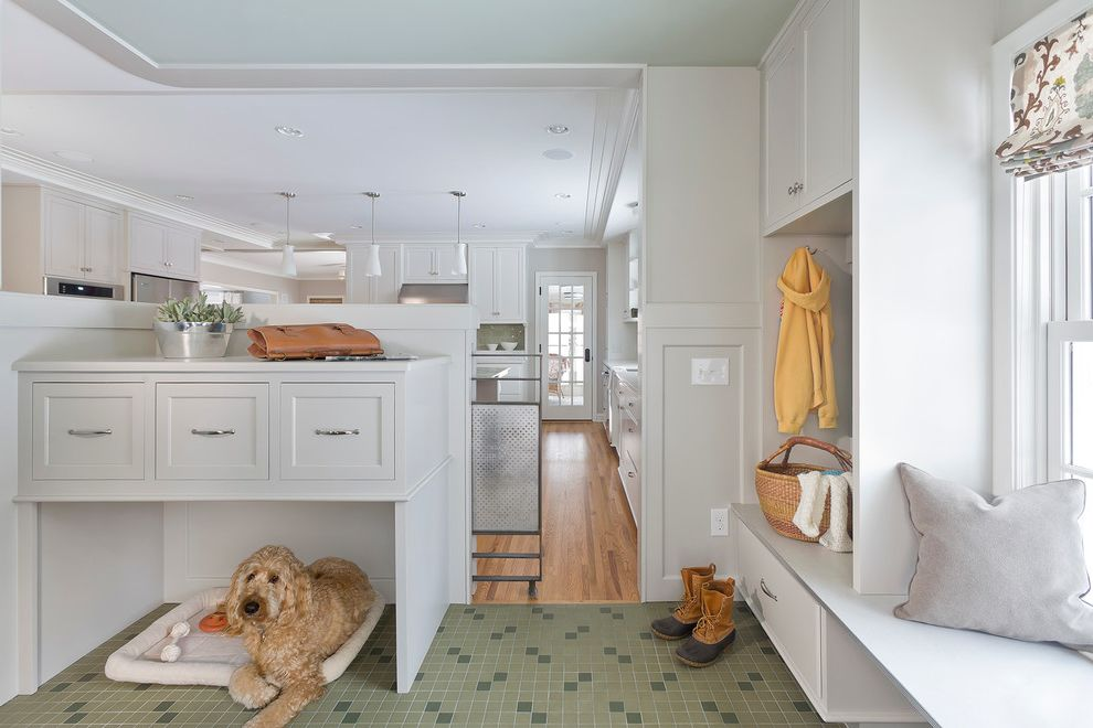 Keep Pets Off Furniture   Transitional Entry  and Dog Bed Green Floor Tile Roman Shade