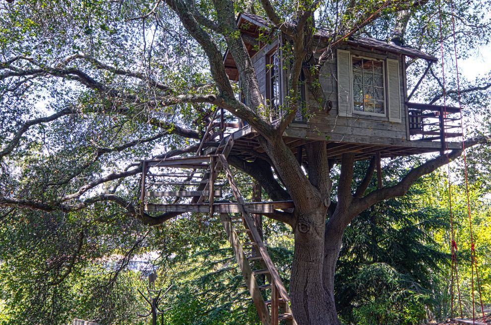 Mile High Ministries   Rustic Landscape Also Balcony Playhouse Shutters Tree Swing Treehouse